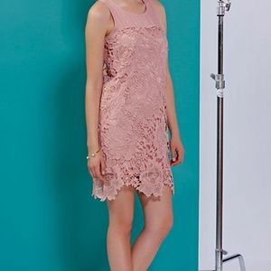 Esley pink crochet dress New with Tags!